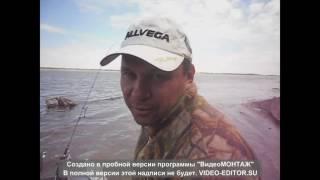 Рыбалка на Волге 2016(, 2016-09-19T21:11:12.000Z)