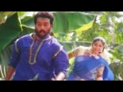 Navvuthu Bathakalira -Konaseema Kurra Danniro - Chakravarthi, Malavika, Sangeetha - HD