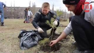 Международный день лесов в Золотом