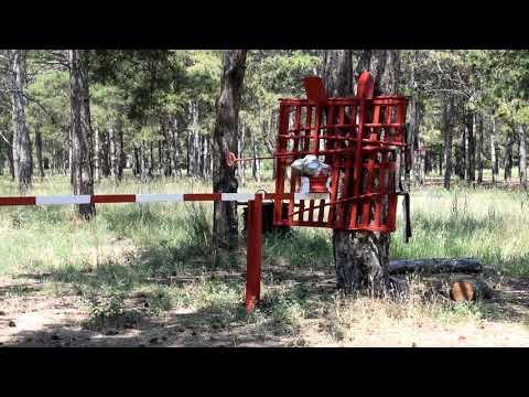 MYKOLAIV DSNS: Рятувальники інспектують лісові масиви області