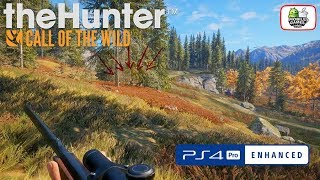 theHunter: Call of the Wild PS4 PRO First Hunt