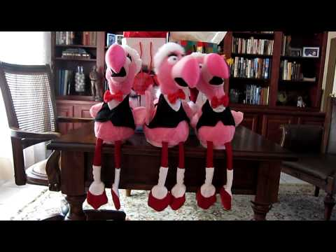 Singing Christmas Flamingos.MOV