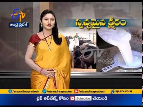Jai Kisan   AP 5th   Organic milk dairy running successfully by Hyderabad farmer