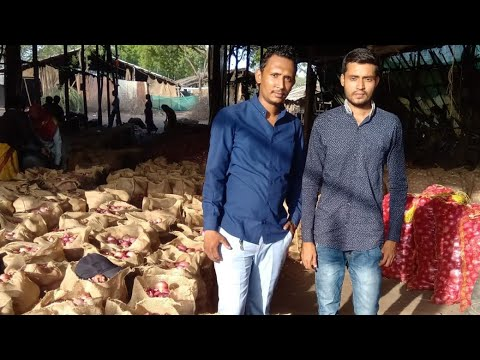 Learn Live : Startup Your Onions Export With 5000 INR Investment (+-Profit!) With Nikunj & Keyur Sir