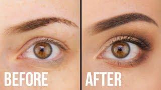 How To Apply Eyesнadow For Absolute Beginners (Makeup 101) || KELLI MARISSA