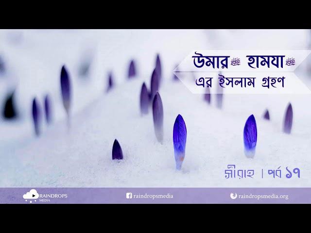 পর্ব ১৭ | সীরাহ | উমার এবং হামযার (রাদিয়াল্লাহু আনহুমা) ইসলাম গ্রহণ | Rain Drops Media