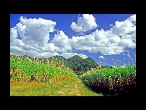 Jamaïque beaux paysages - hôtels hébergement voyage voile