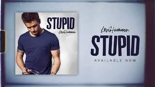 Play Stupid