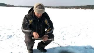 видео Зимняя рыбалка или как ловить рыбу зимой. Все о подледной рыбалке