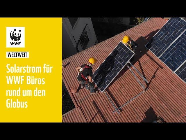 Solarstrom für WWF Büros   WWF Weltweit
