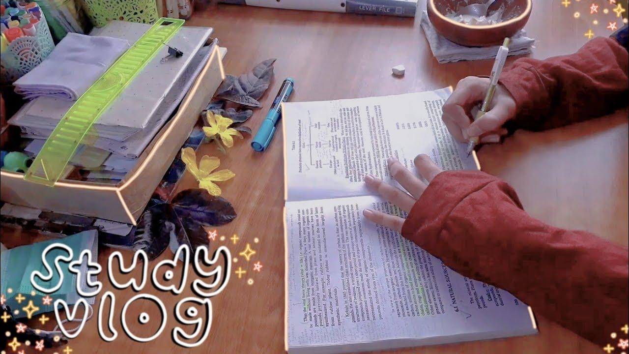 "study vlog ƪ(‾.‾"")┐  exam prep, lots of studying, cooking & journaling"