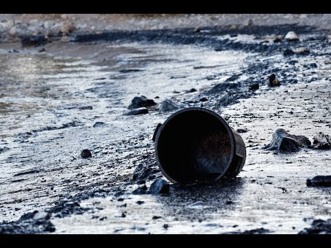 Massive Oil Spill Hits Gulf Of Mexico