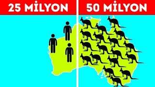 Avustralya Hakkındaki Bütün Klişeleri Alt Üst Eden 50 Gerçek