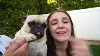 LAST TO FALL IN THE POOL WINS $20,000 - Challenge 💦| Piper Rockelle