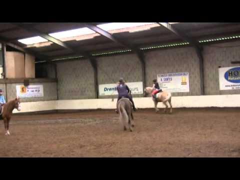 Paard en pony mijn manege gratis en pc
