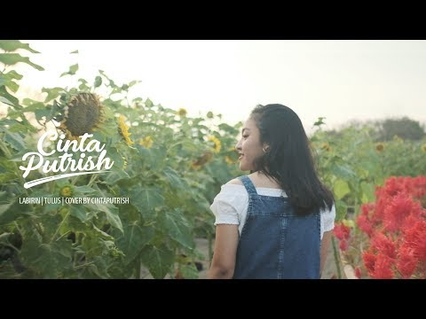 Labirin | Tulus | Cover By Cintaputrish
