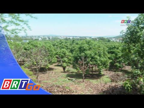 Đất rừng phòng hộ không thể cấp cho dân | BRTgo