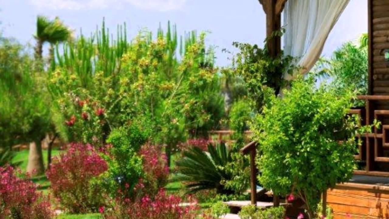 Flora Garden Beach Club Hotel 5* Турция - YouTube