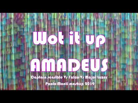 Wot me up Amadeus - Captain sensible Vs Falco Vs Major Lazer - Paolo Monti mashup 2019