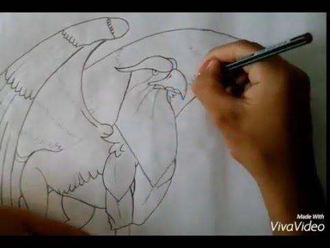 Dibujo A Lapiz Grifon Youtube