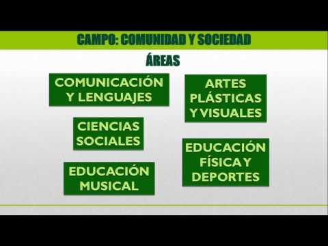 Comprendiendo La Estructura Curricular Uf 3