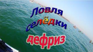 Рыбалка на Дефризе ловля селёдки во Владивостоке Приморский край 2019