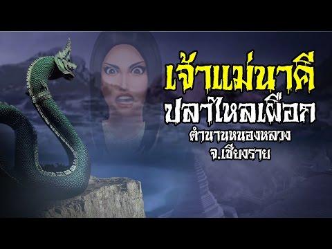 เจ้าแม่นาคี ปลาไหลเผือก (ตำนานหนองหลวง จ.เชียงราย) : เรื่องเล่าตำนานผี
