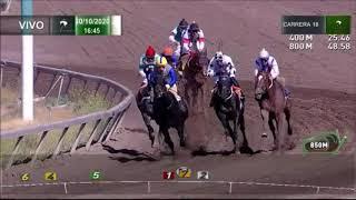 Vidéo de la course PMU PREMIO CHANGO