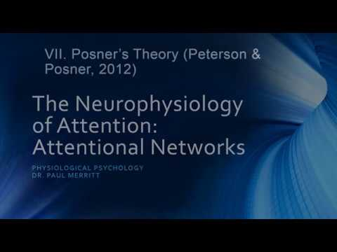 Neurophysiology of Attention: Attention Networks