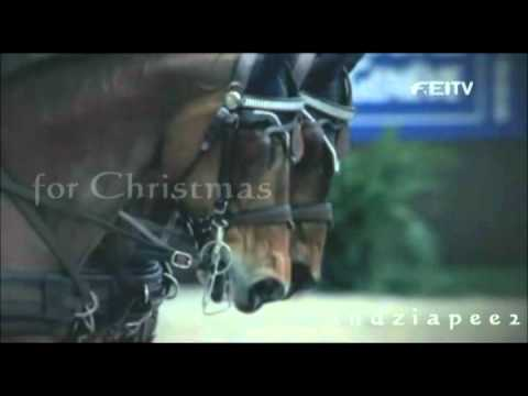 All I Want For Christmas Is You ! MERRY CHRISTMAS ! ! !