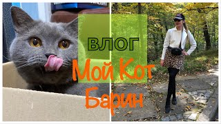 Влог: Я ЖИВУ С БАРИНОМ! Уход за лицом дома, витамины от судорог, кот, первый снег в Беларуси!