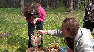 Урожай рыбы и улов грибов. В Верхней Салде прошли соревнования «Грибной охотник»