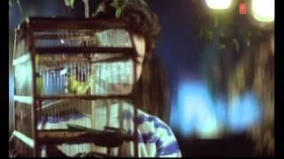 Tumhein Dil Se Chaha Tha Full Song | Meera Ka Mohan | Avinash Wadhawan, Ashwini Bhave