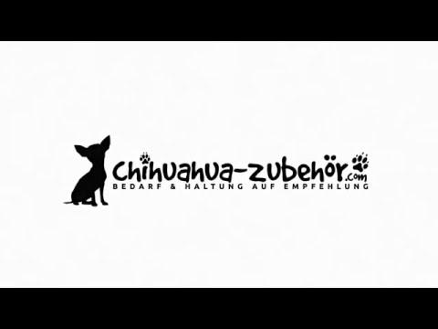 chihuahua-zubehör.com-|-bedarf-&-haltung-auf-empfehlung-trailer