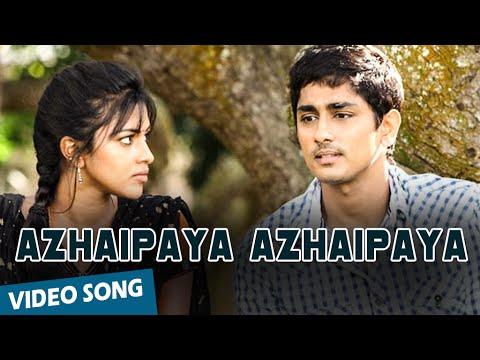 Azhaipaya Azhaipaya   Song  Kadhalil Sodhapuvadhu Yeppadi  Siddharth  Amala Paul