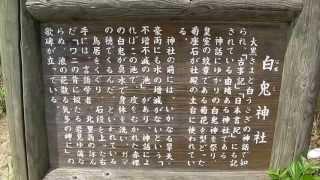 家族旅行として、鳥取砂丘と一緒に白兎神社(鳥取県)にも行ってきました。