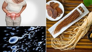 Top 10 Health Benefits Of Ginseng | Importance of Ginseng For Men and Women