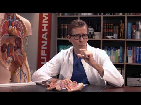 Was kann ich gegen eine Blasenentzündung machen?