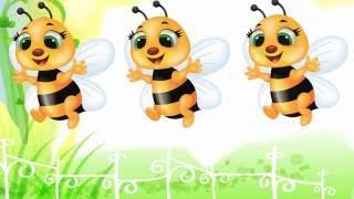 Dạy bé tập nói tiếng Việt   Em tập đếm số từ 1 đến 10 với con ong vàng   Dạy trẻ thông minh sớm