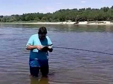 диалоги о рыбалке ловля сазана на реке