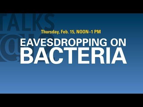 Talks@12: Eavesdropping on Bacteria