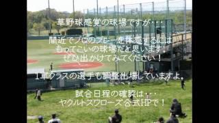 東京ヤクルトスワローズの2軍本拠地 『ヤクルト戸田球場』 の観戦ガイド...