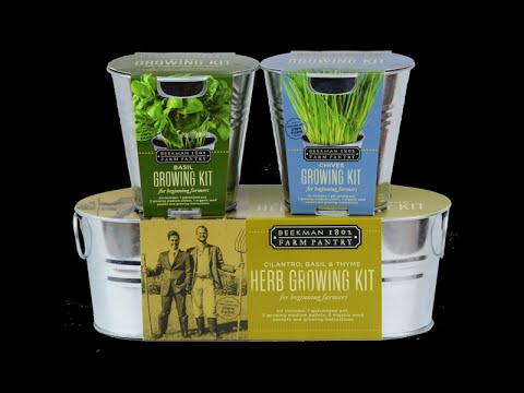 Basil & Chives Growing Kit