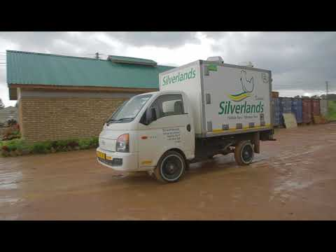 Silverlands Poultry, Tanzania