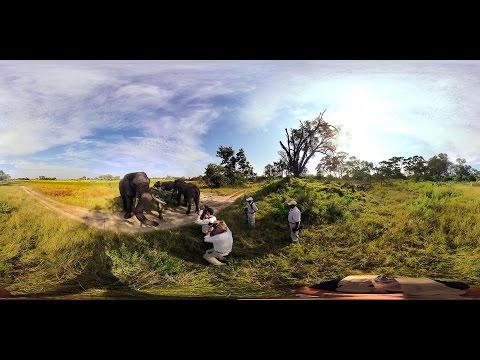 360 Video Elephant walk,  Oculus Rift VR - Photos of Africa