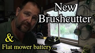 VLog #2 Flat Toro Battery New Brushcutter Chicken Ducks Vegetable Garden