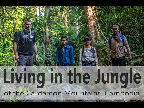 Life in the Jungle of Cambodia