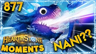 YOU ARE ALREADY DEAD!!!... Maybe Not | Hearthstone Daily Moments Ep.877