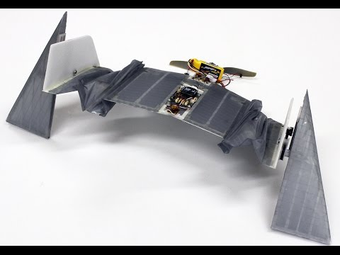 A flying robot that can walk