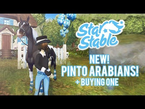 New pinto Arabians + buying one! | Star Stable Updates